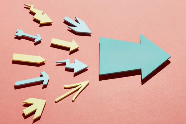Management : Comment Valoriser Le Collectif Et L'individuel